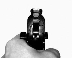 gun2-300x240